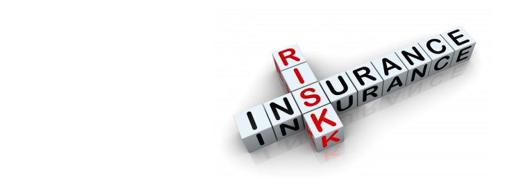 Risk Management and Insurance original written